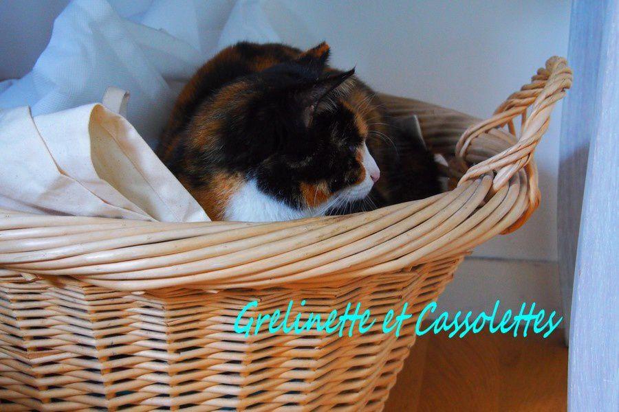 Hortense adepte du panier à linge