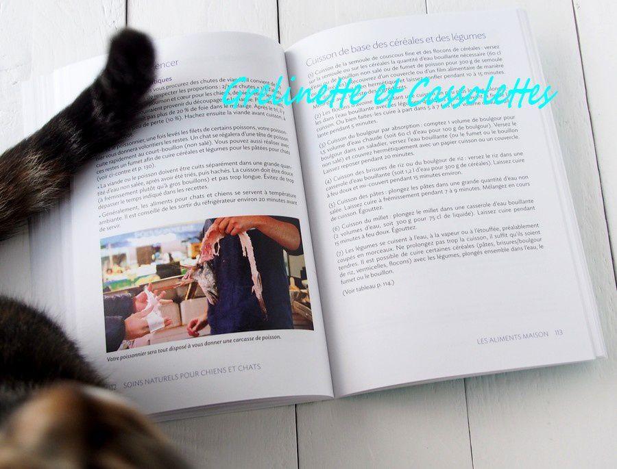 Chronique Livres de Grelinette et Cassolettes : 600 ! Avec Dundee pour Assistante Photo