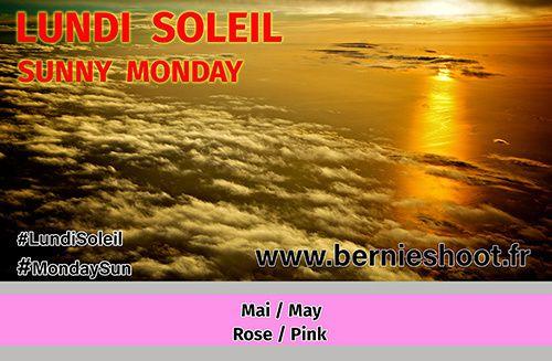 Lundi Soleil en Rose