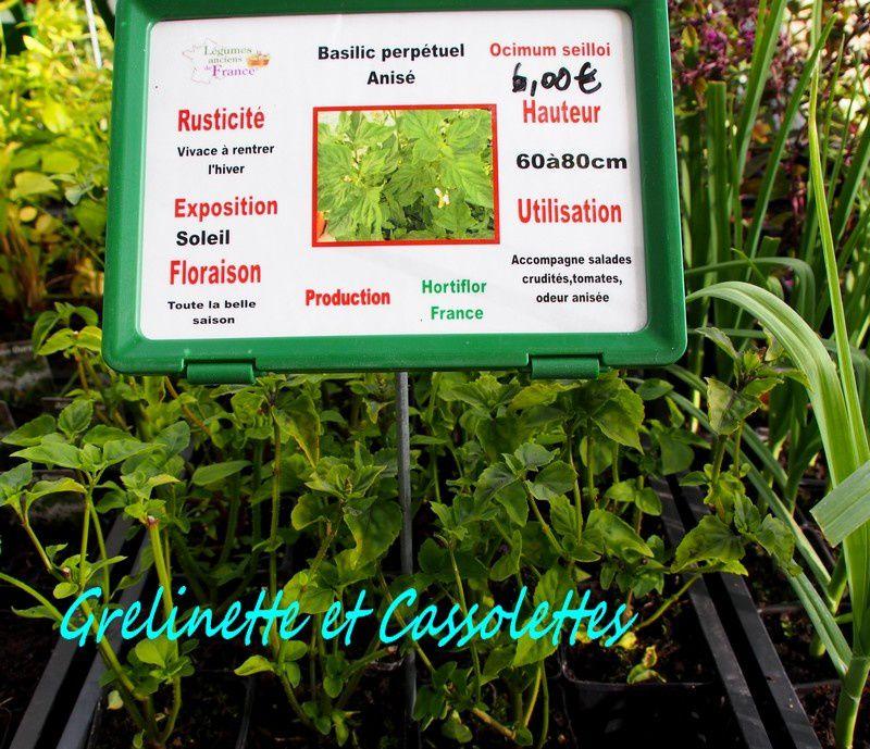 Hortiflor Bureau à Chantilly : Légumes Vivaces