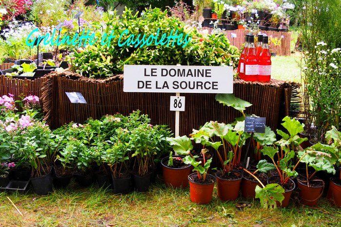 Merveilleuse Fête des Plantes de Saint Jean de Beauregard 1