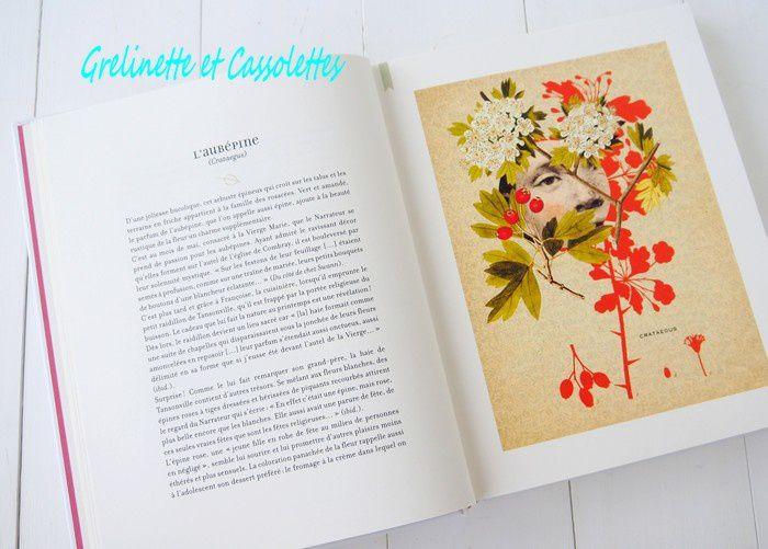 L'Herbier de Marcel Proust, Dane Mc Dowell