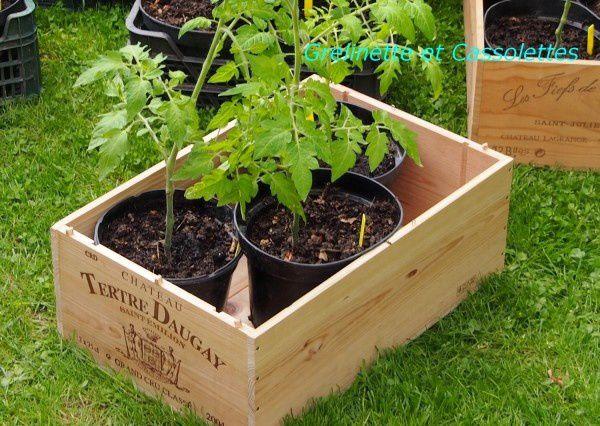 Mes Paniers de Jardin Nomades Kajo... (je peaufine ma stratégie tomates)