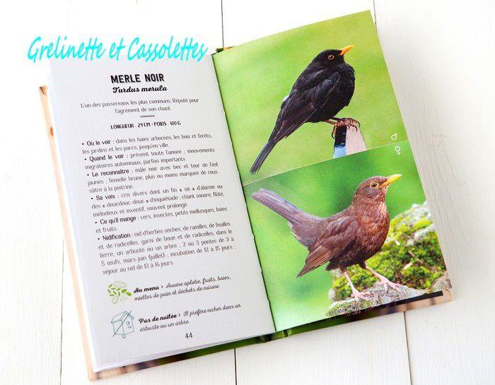 Coffret le Resto des Oiseaux, et Jeu pour le Gagner
