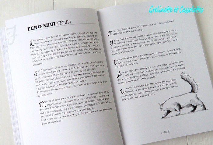 Soyez Chat ! 40 Leçons de Sagesse Féline, Anne Claire Gagnon