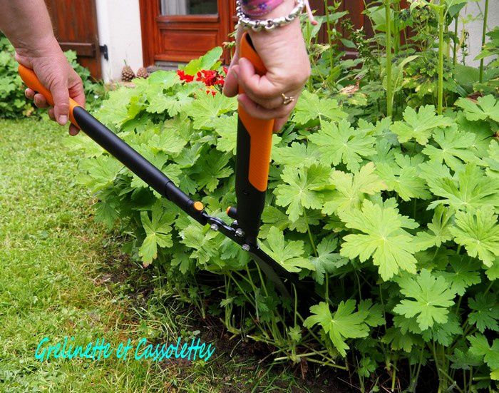 Un Petit Côté Jardin Anglais : Cisaille à haies Fiskars