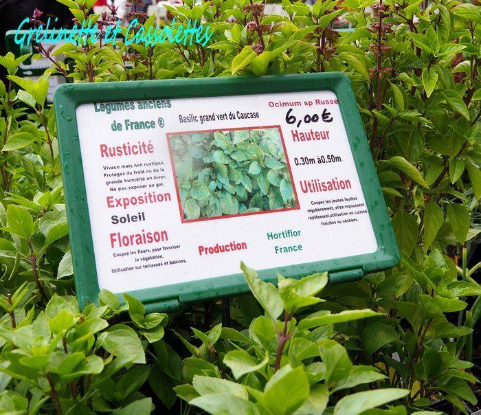 Hortiflor Bureau à Saint Jean de Beauregard : Potager perpétuel et Collections de Plantes !