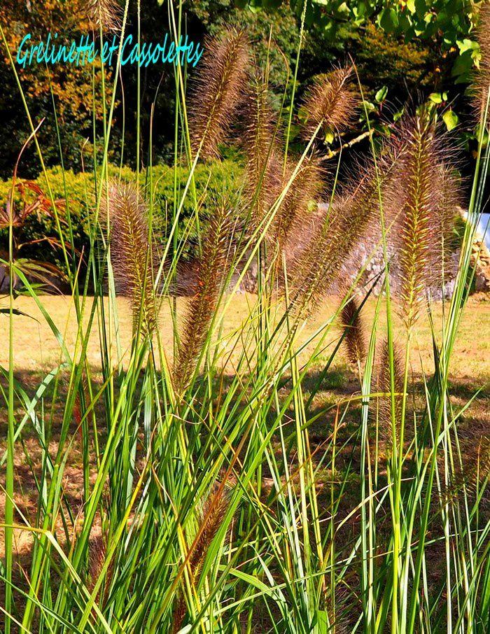 Journées des Plantes et Art du Jardin à Jossigny