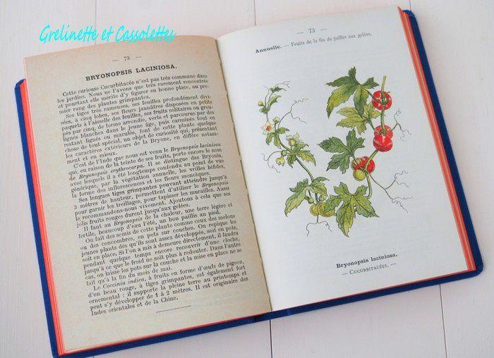 Atlas de Poche des Fleurs de Jardin