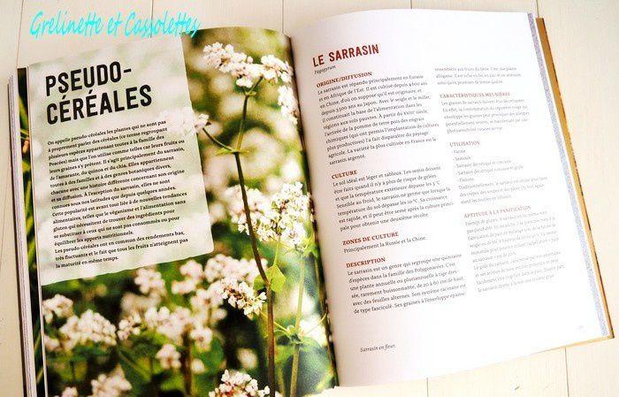 Pains Complets & Céréales Anciennes, Lutz Geisslen, Editions Ulmer