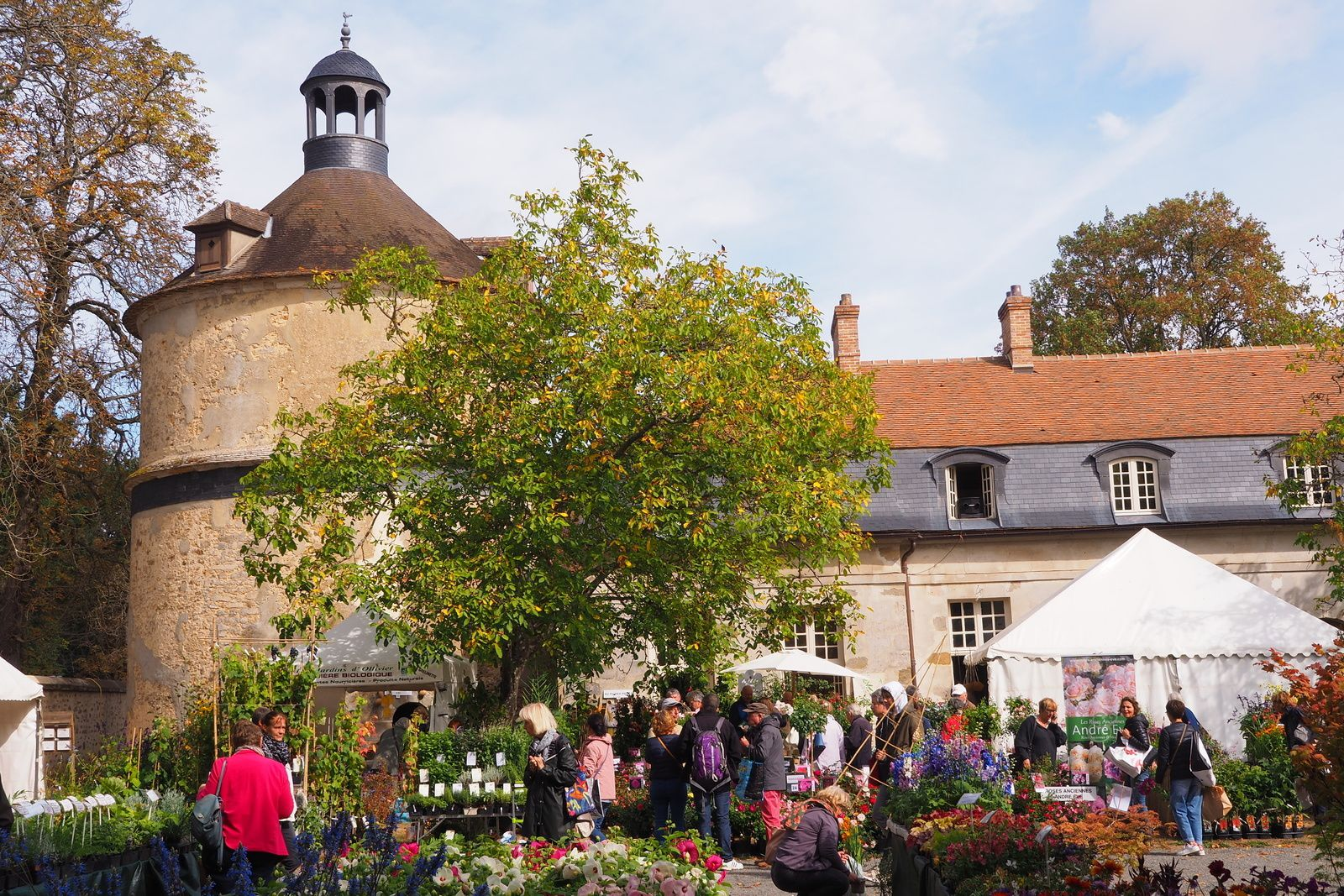 Save the Date : Fête des Plantes de Saint Jean de Beauregard, les 12, 13 et 14 avril 2019
