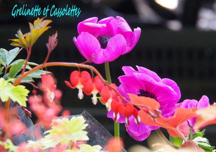 Pourquoi il faut, selon moi, aller à la Fête des Plantes de Saint Jean de Beauregard (nous sommes tous des colibris)