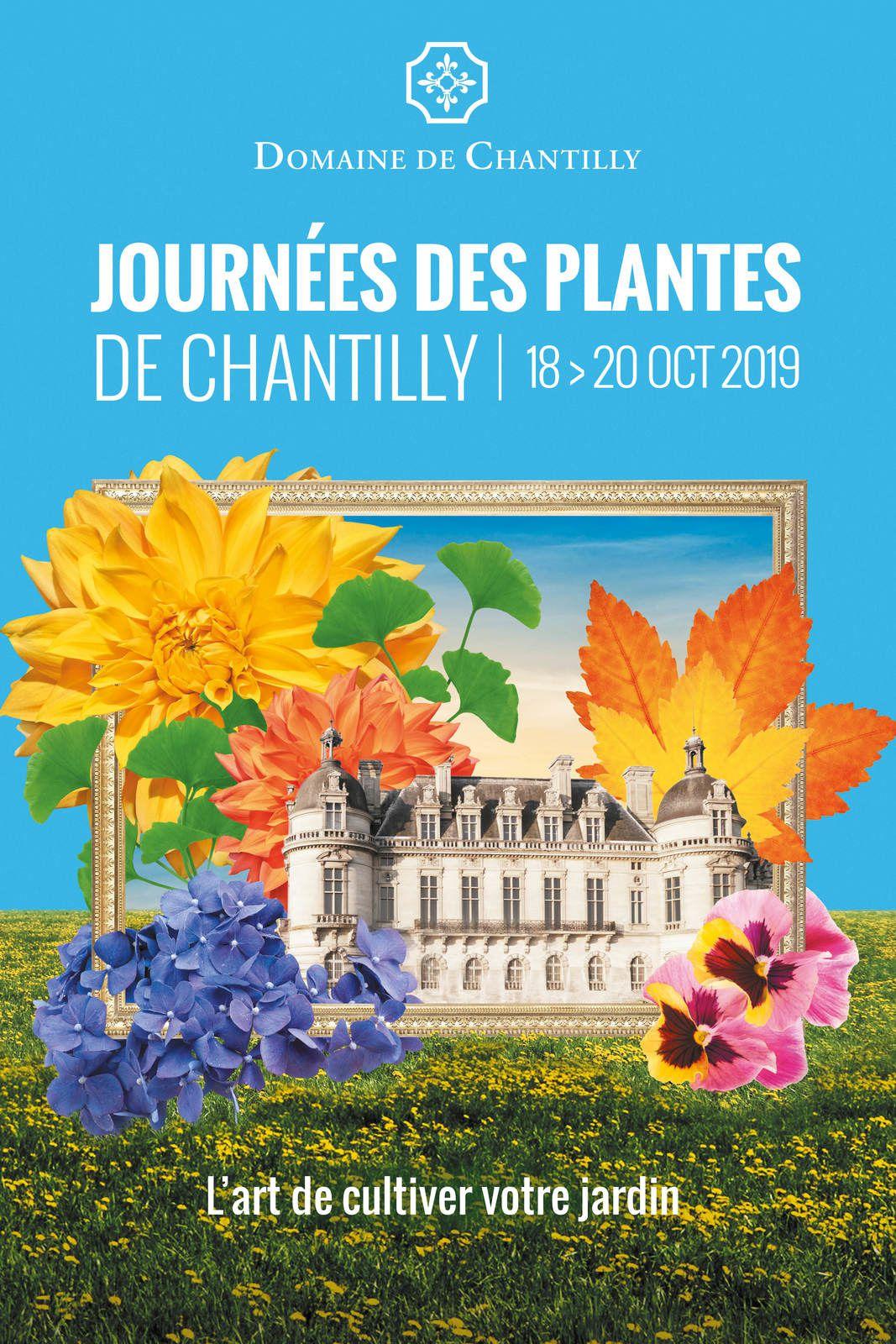 Les Sans Soucis, Journées des Plantes d'Automne de Chantilly