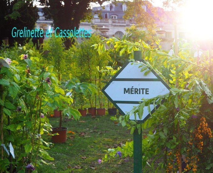 Les Sans Soucis des Journées des Plantes de Chantilly, Suite