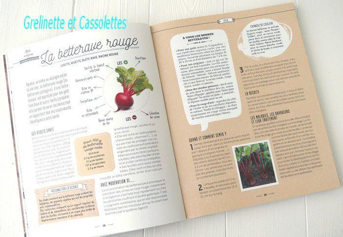 Je cultive des Super Légumes dans mon Potager, pour manger sain et naturel