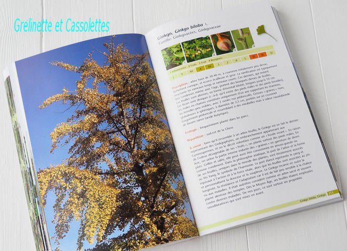 Identifier Arbres et Arbustes en toutes Saisons
