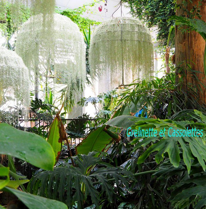 Rainforest, Patrick Nadeau, Festival International des Jardins de Chaumont sur Loire