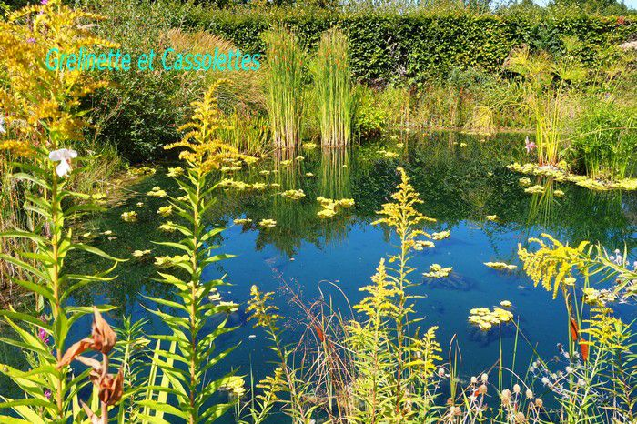 Festival International des Jardins de Chaumont sur Loire 2020