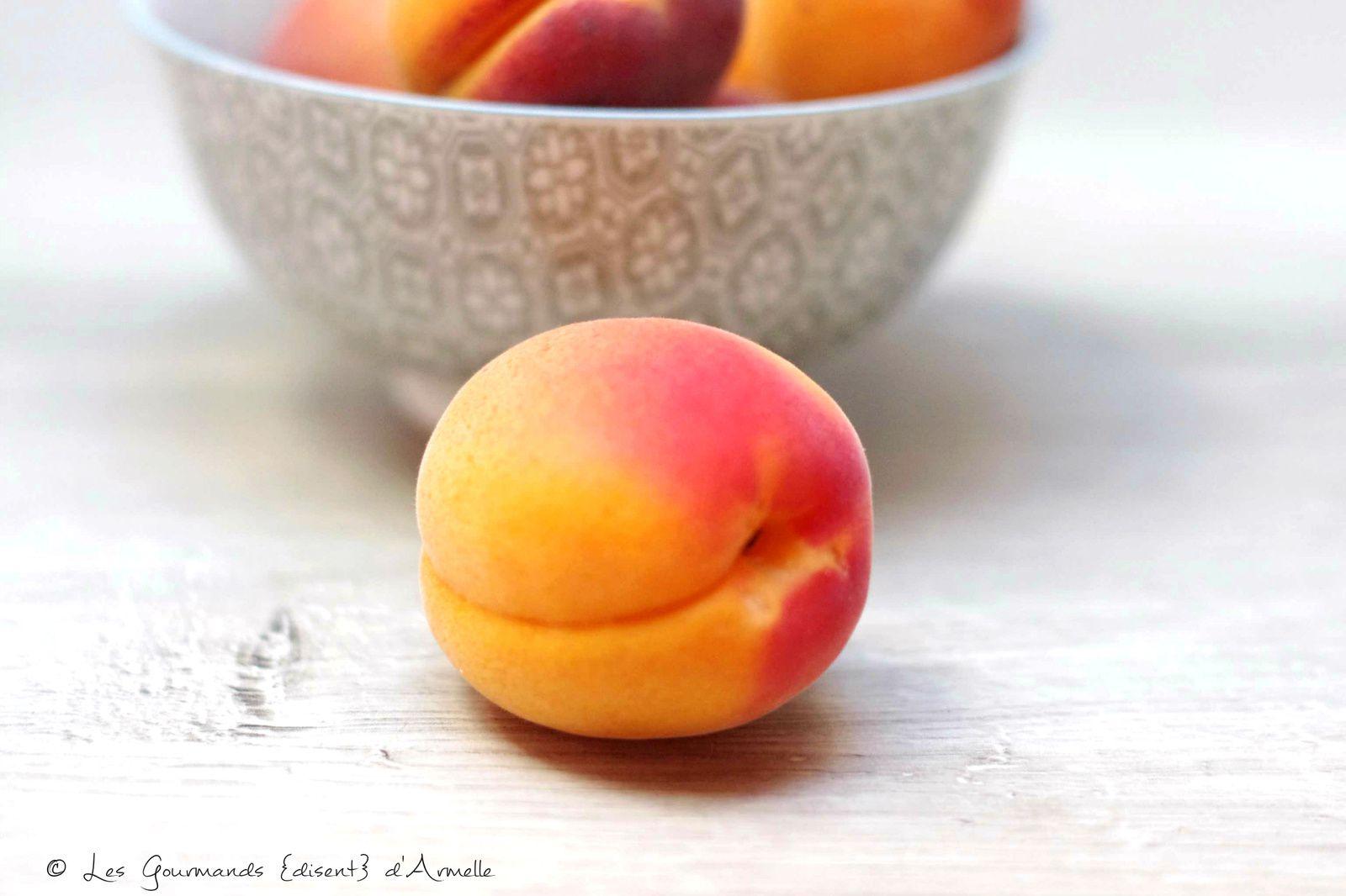 | Le fruité | Moelleux aux abricots, pistache et groseilles| © Les Gourmands {disent} d'Armelle