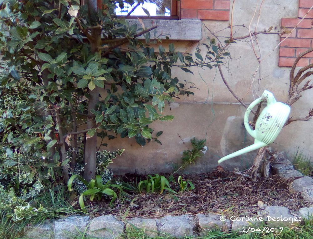 Du jardinage.
