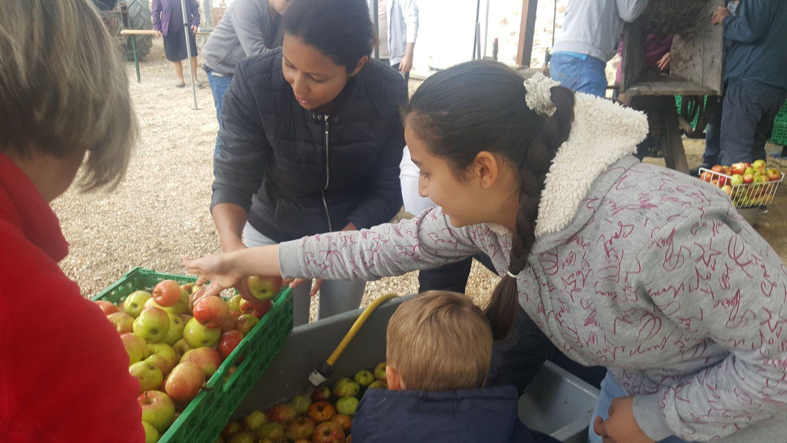 fête de la pomme a janvry