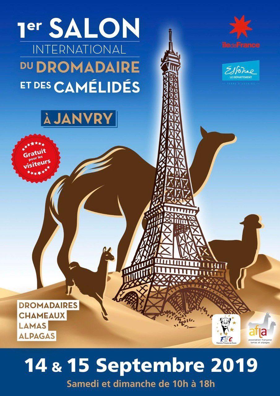 1° salon international des  camelidés  en france