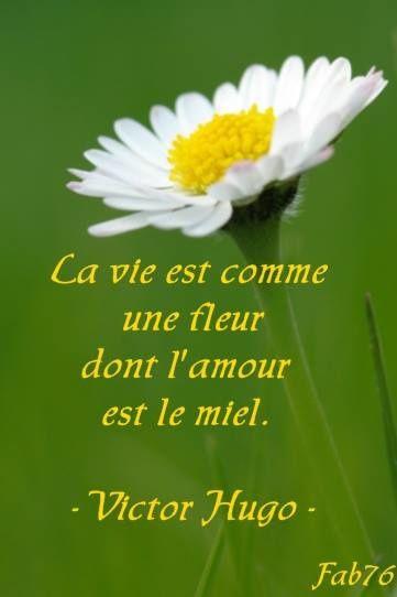 Citation de Victor Hugo sur la vie et l'amour