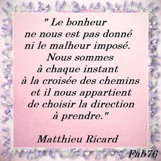 Citation de Mathieu Ricard sur la quête du bonheur