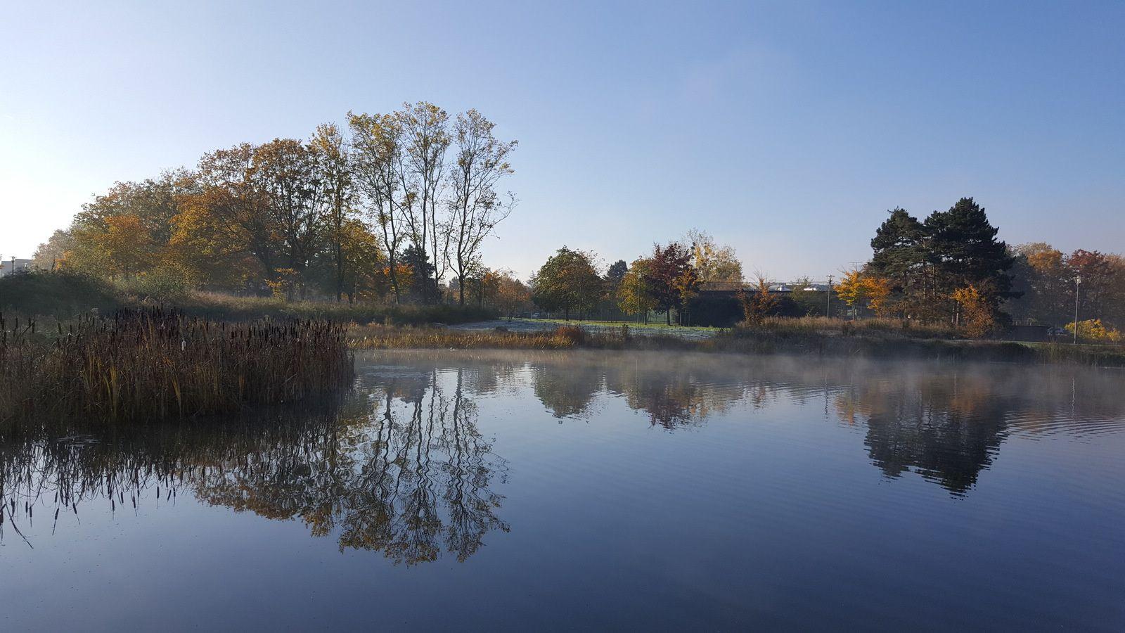Cergy dans le parc de la préfecture entre brouillard et soleil d'automne
