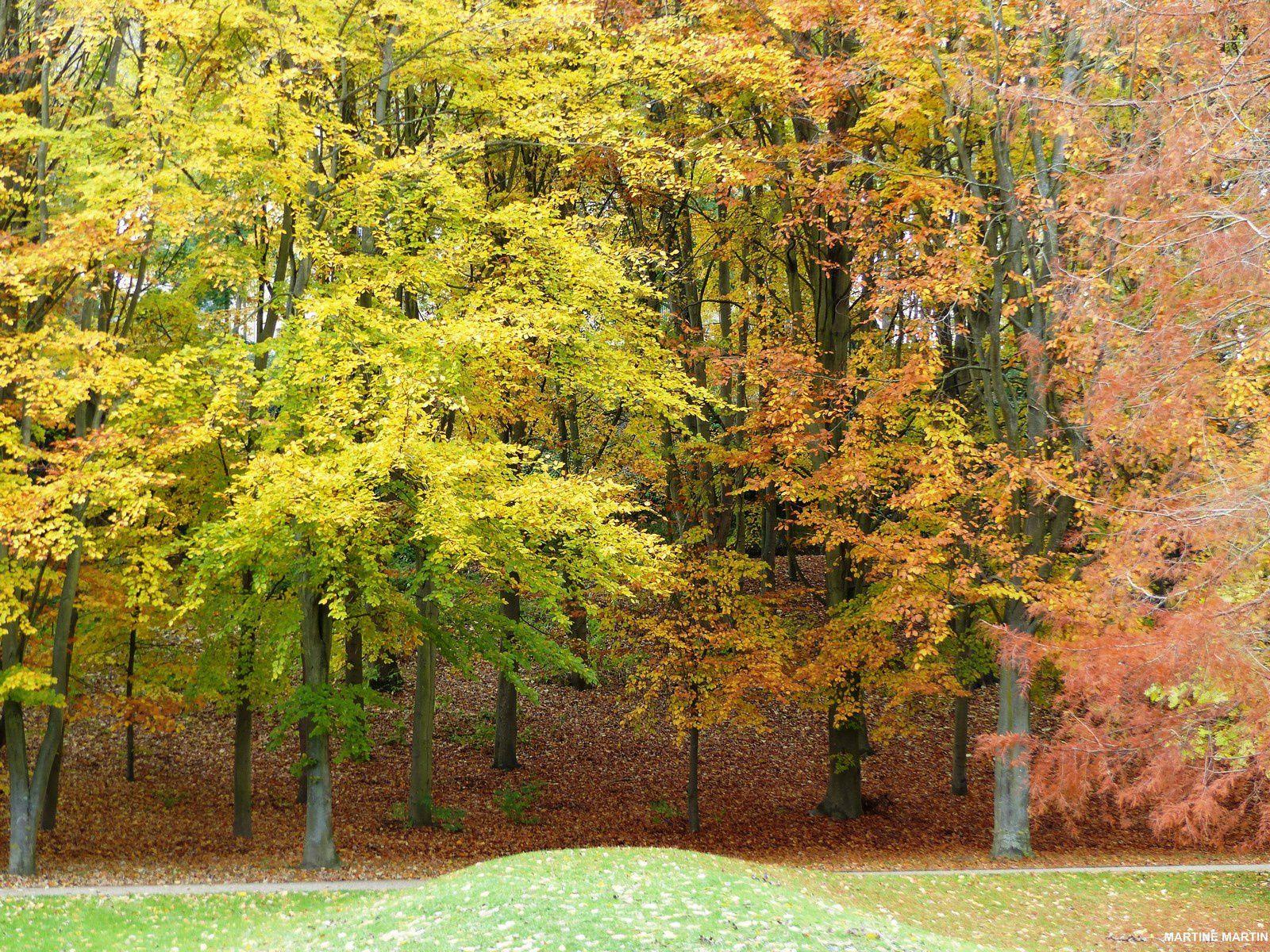 Le parc des Larris à l'automne