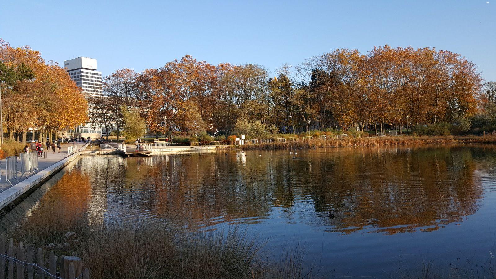 Parc de la Préfecture en Novembre