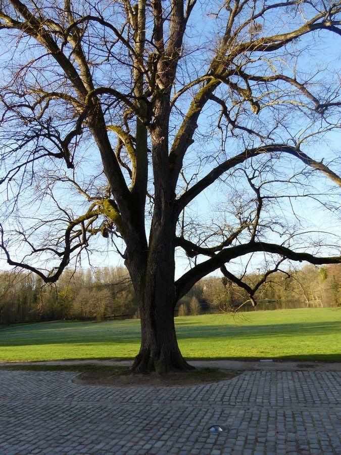 Le château de Grouchy et son parc à Osny
