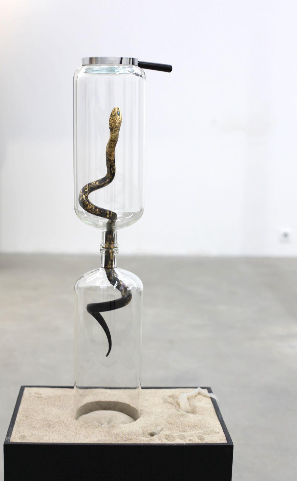 """id-od 3"", 2015 de Sunil GAWDE - Courtesy Galerie Rabouan Moussion © Photo Éric Simon"