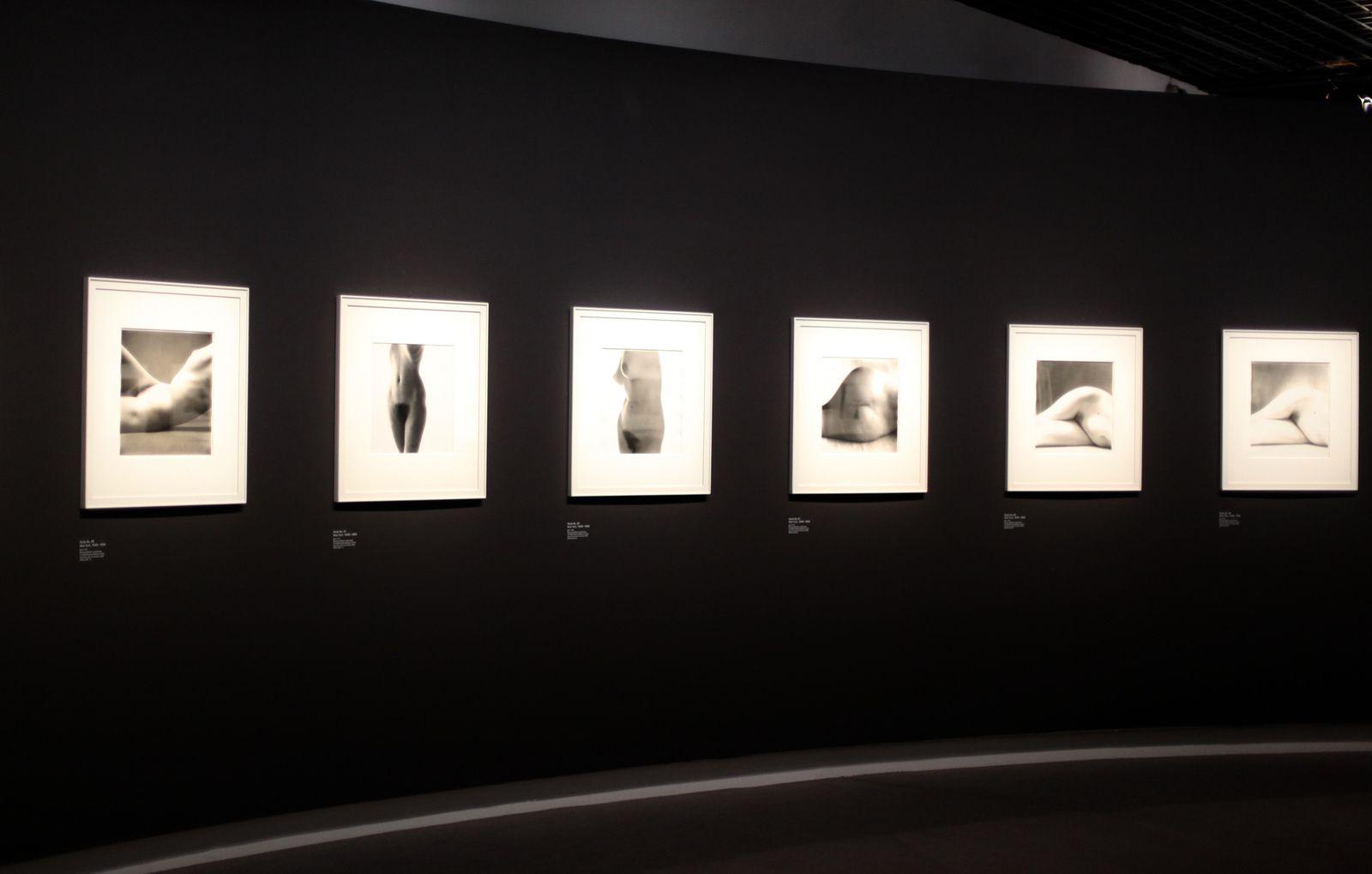 Série Nude  d'Irving PENN © Photo Éric Simon