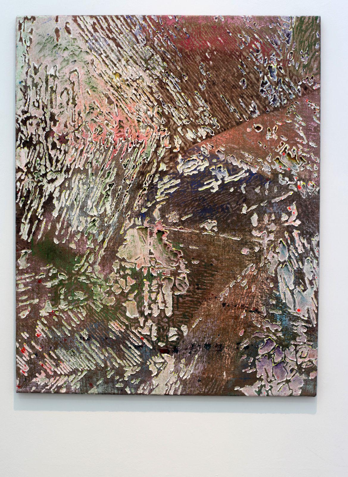 """Fields"", 2017 de Jutta HAECKEL - Courtesy NextLevel Galerie © Photo Éric Simon"