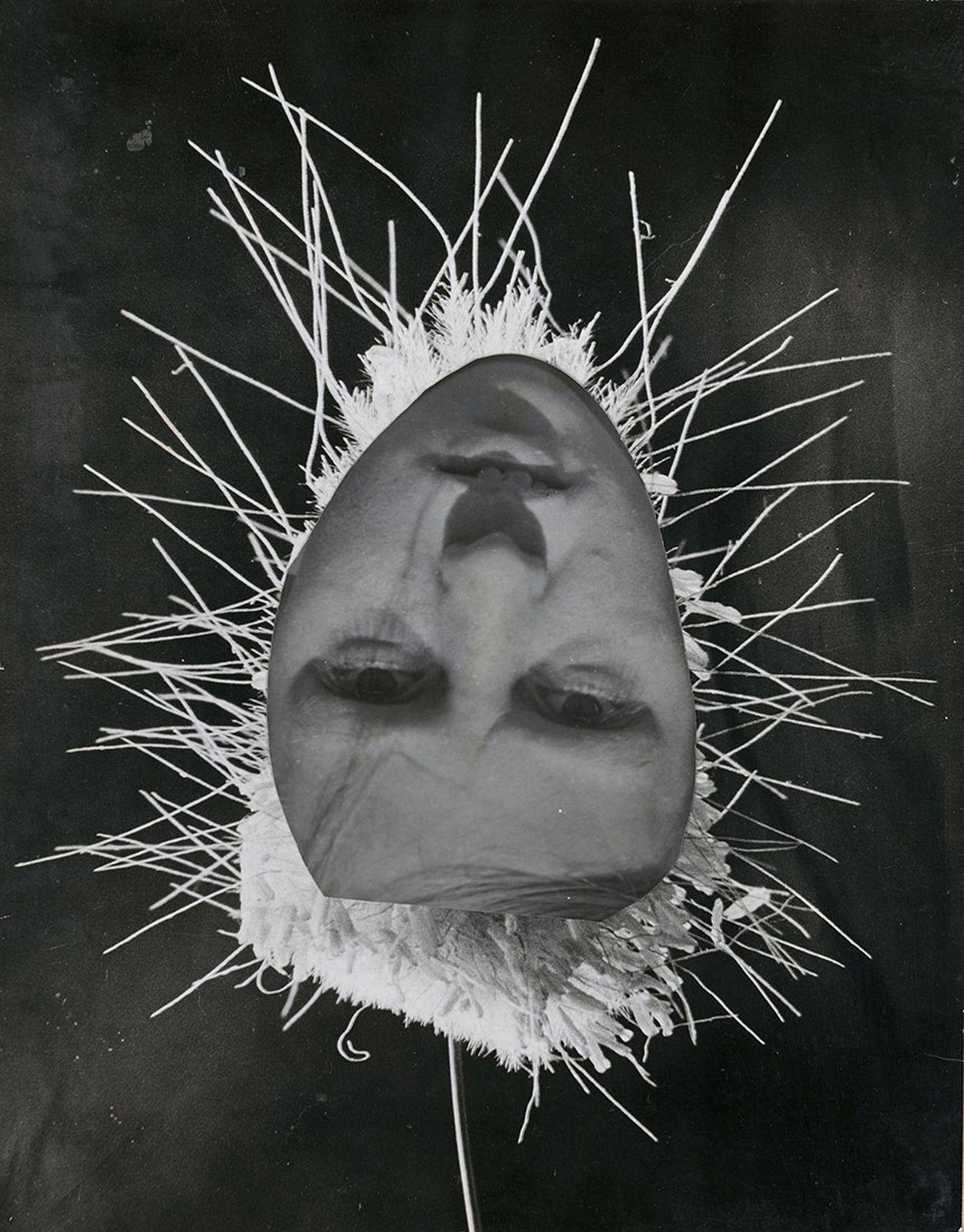 """""""Petite fleur en herbe"""", 1932 de Raoul HAUSMANN - Courtesy Jeu de Paume"""
