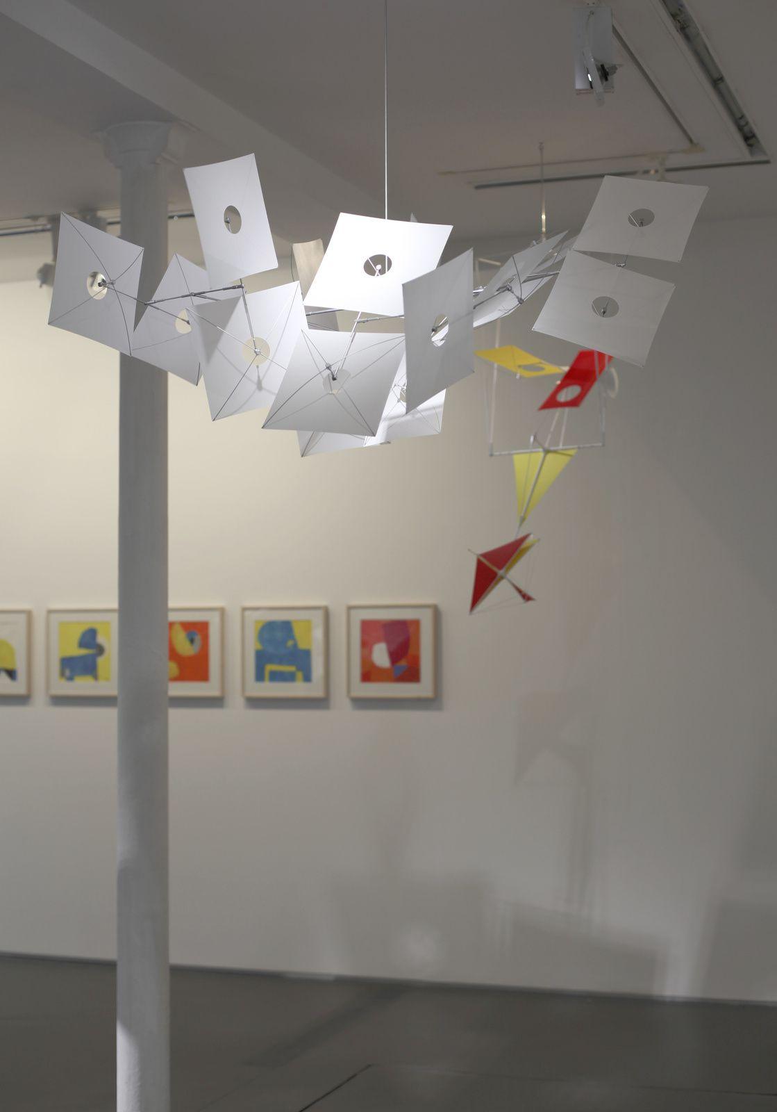 Exposition Solo Show : Susumu SHINGU« Cosmos »