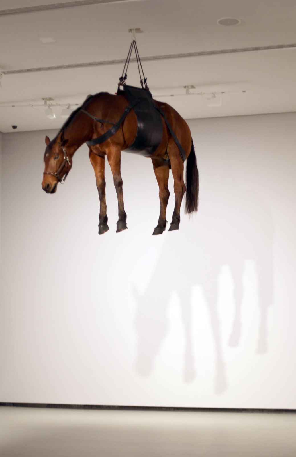 """La ballade de Trotski"", 1996 de Maurizio CATTELAN - Courtesy FONDATION LOUIS VUITTON © Photo Éric Simon"