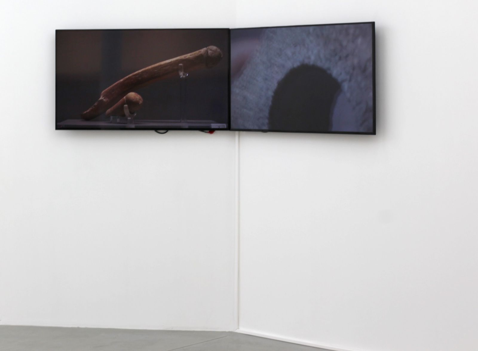"Video ""One Affects the others"" de Carlos ALFONSO - Courtesy Galerie Paris-Beijing © Photo Éric Simon"