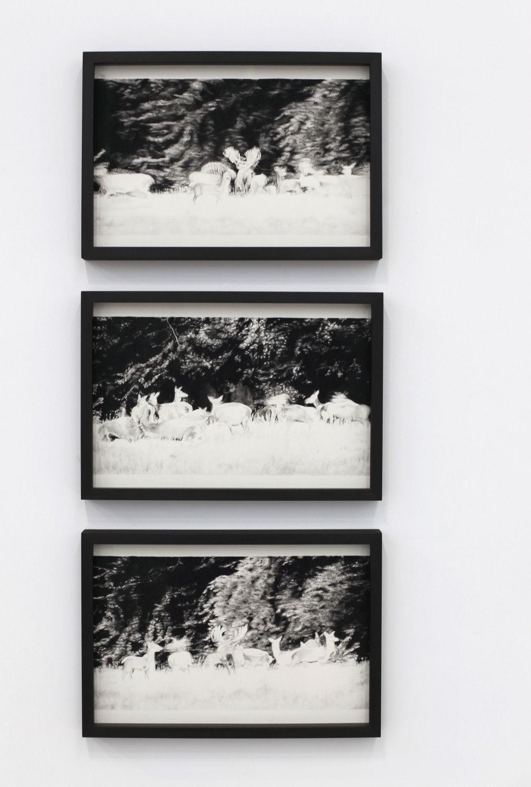 """""""Harem 01, 02, 03"""", 2017 de Mathieu DUFOIS - Courtesy La Galerie Particulière © Photo Éric Simon"""