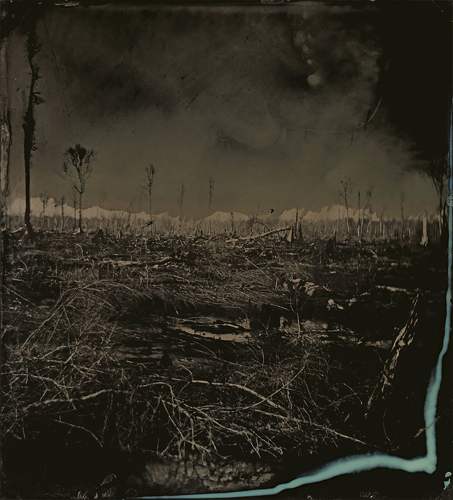 """Blackwater 3"",  2008-2012 Sally MANN Tintype. Collection of the artist © Sally Mann"