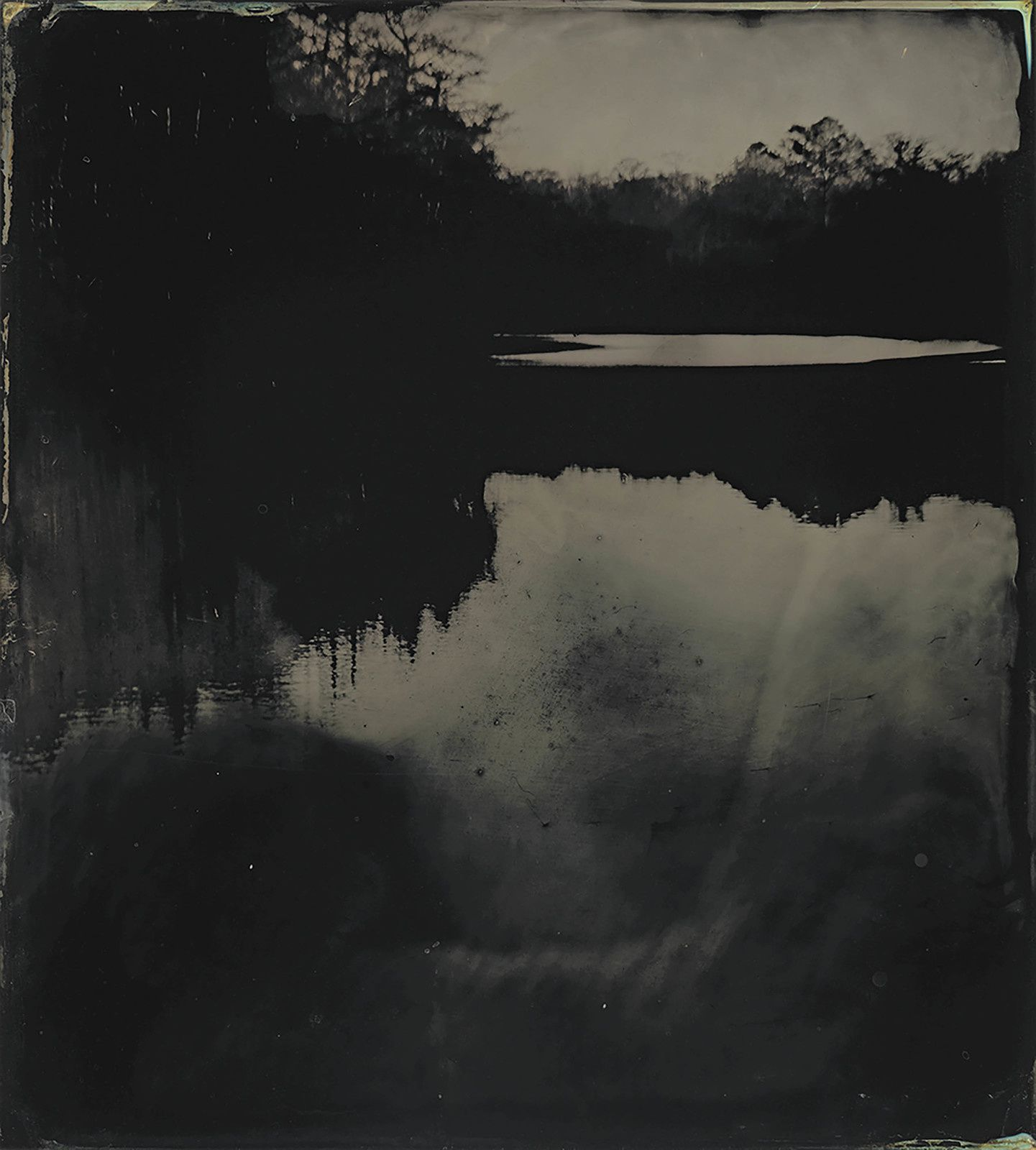 """Blackwater 17"", 2008 - 2012 de Sally MANN Tintype. Collection of the artist. © Sally Mann"