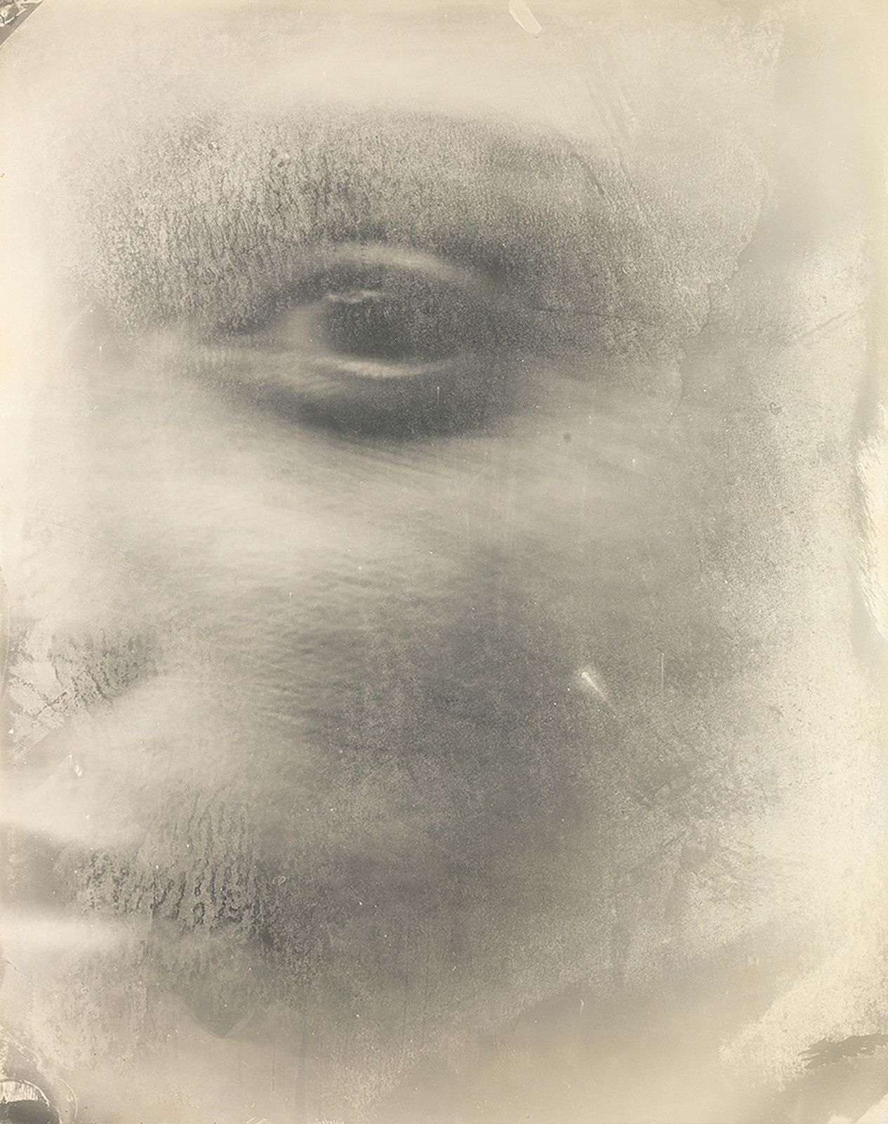 """Virginia #6"", 2004 Sally MANN. National Gallery of Art, Washington, Promised Gift of Stephen G. Stein Employee Benefit Trust. © Sally Mann"