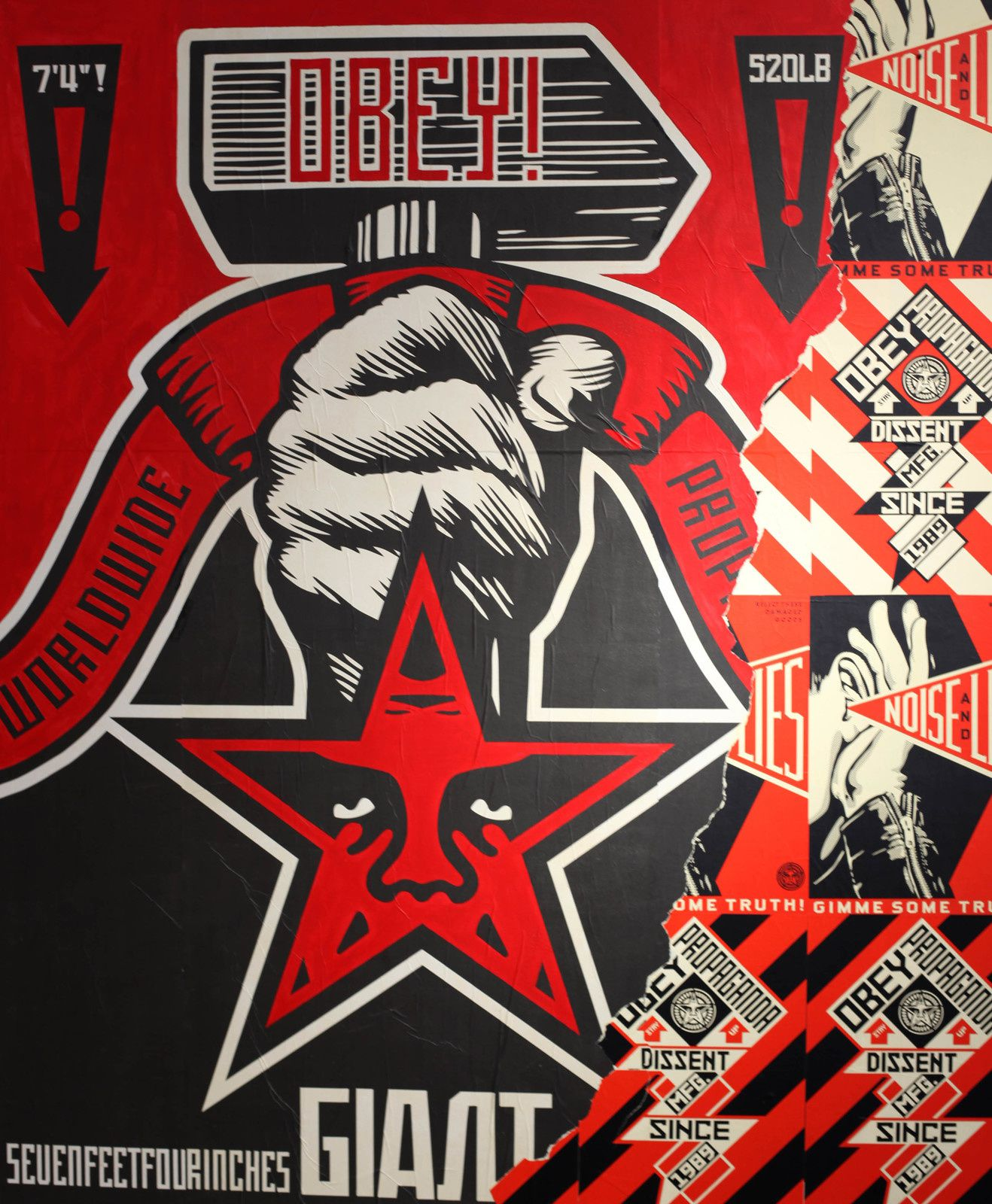 Shepard FAIREY - Courtesy Galerie Itinerrance © Photo Éric Simon