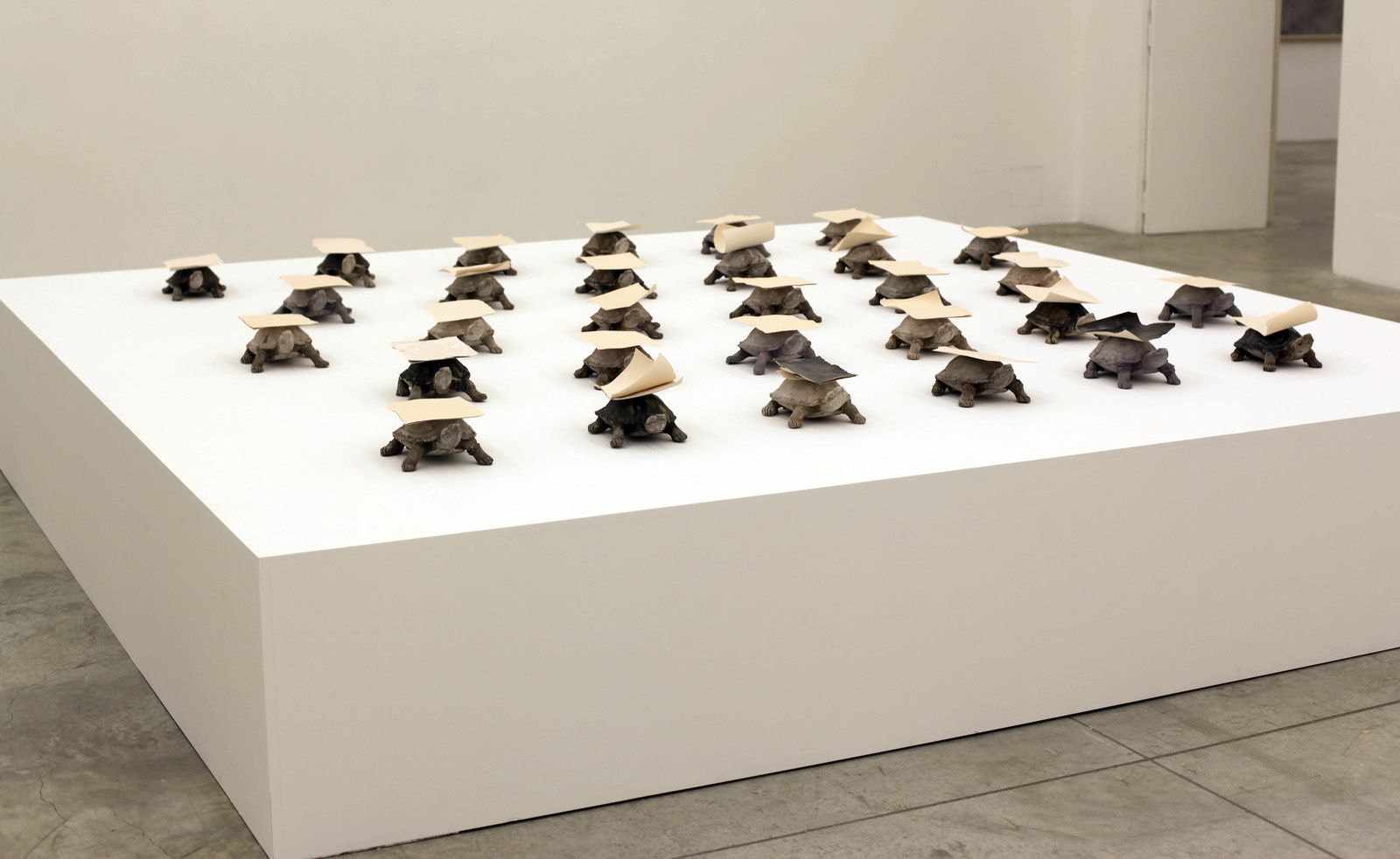 """At a Tortoise's Pace"", 2019 de Thu VAN TRAN - Courtesy Galerie Almine RECH Paris © Photo Éric Simon"