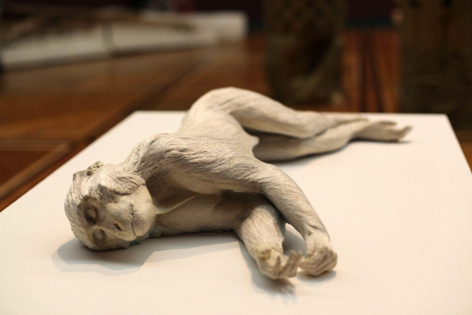 """""""Primate"""", 2009 de Daphne WRIGHT - Courtesy de l'artiste et de la galerie Frith Street, London  © Photo Éric Simon"""