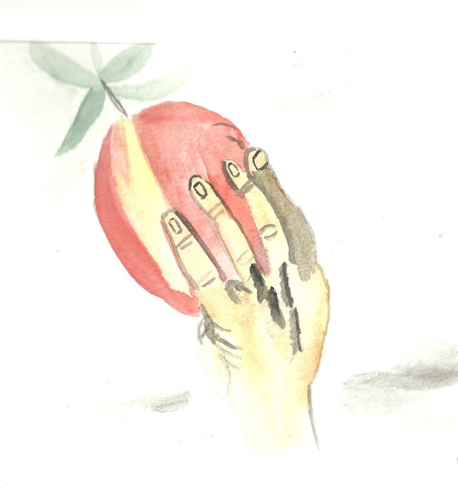 La Guerre de Troie : où tout débute en raison d'une pomme (2)