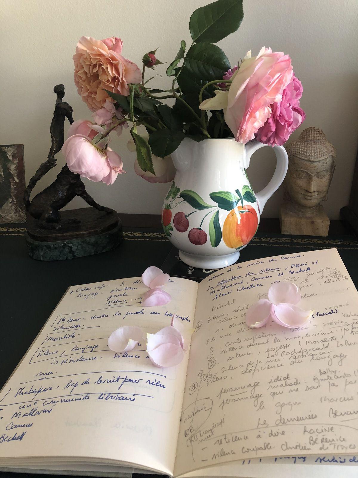 thème, journal, écrivain, genre, mémoire, différence