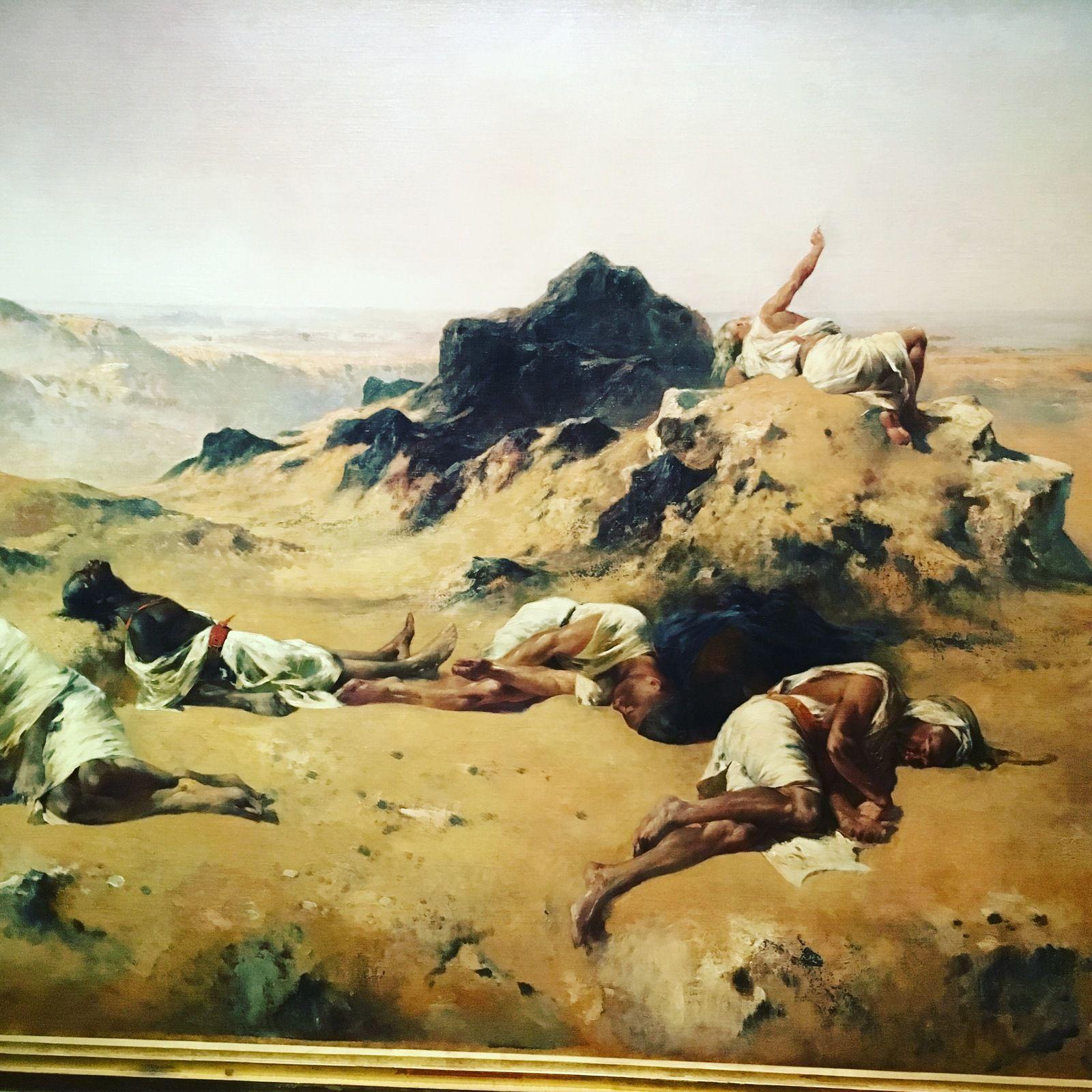 saison, thème, livres, littérature, Fromentin, Sahel