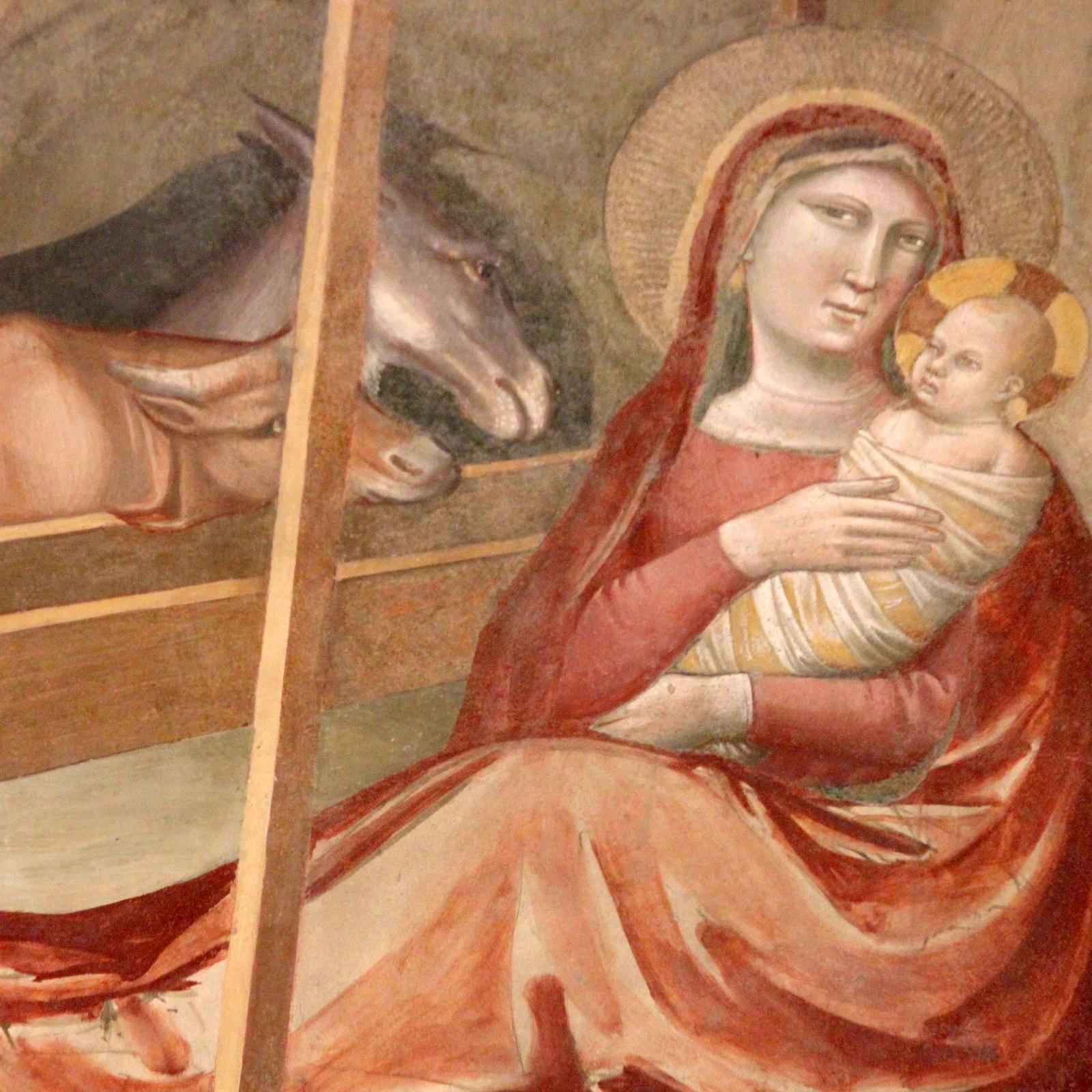 Chapelle Baroncelli. Taddeo Gaddi. Noël à Florence.